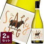"""【BlackSheepブラックシープ】'TheScallywag'Chardonnay(""""スキャリーワッグ""""シャルドネ)2本セット【ワイン白ジョージーズワインズお酒シャルドネギフトワインセット】"""