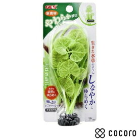 GEX 癒し水景 ピュアプランツ チドメグサ 1コ入 アクアリウム 小動物 ()