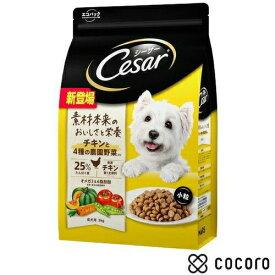 シーザー ドライ 成犬用 チキンと4種の農園野菜入り 小粒 3kg 犬 ドッグフード えさ 餌 ドライ ◆賞味期限 2021年11月