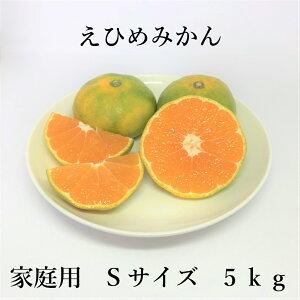 REMICO【送料無料】えひめみかん Sサイズ 5kg