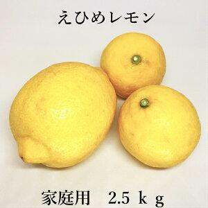 【送料無料】えひめレモン 2.5kg (国産レモン)