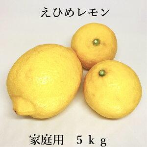 【送料無料】えひめレモン 5kg (国産レモン)