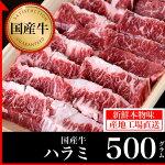 鹿児島黒牛ハラミ500g【鹿児島黒牛】【鹿児島】【薩摩】【ステーキ】【ハラミ】【ホルモン】【内蔵】【牛肉】【ビーフ】【焼肉】【贈答】