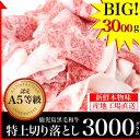 A5 鹿児島 黒毛和牛 極上大判 切り落とし 3000グラム 500g×6パック 送料無料 最高級 和牛 牛肉 国産 贅沢 肉 訳あり…