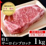 鹿児島黒毛和牛サーロインブロック1kg【鹿児島】【薩摩】【ブロック】【黒毛和牛】【霜降り】【ステーキ】【サーロイン】【牛肉】【ビーフ】【焼肉】【贈答】【A5クラス】(kagoshimabeef)