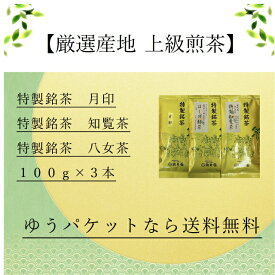 日本茶 お茶 送料無料 厳選銘茶 3本セット 産地別 静岡 八女 知覧 100g×3本
