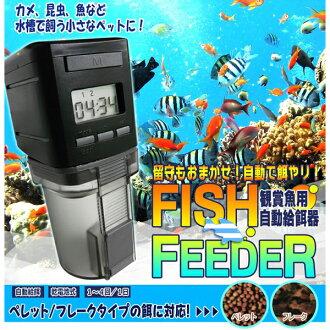 -自动喂料机 autofeeder 观赏鱼的热带鱼 (某人)
