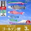 ゴールデン鯉