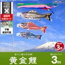 フジサン鯉のぼり 庭園用 こいのぼり「富士山麓之手染鯉 黄金鯉 3m 3色 大型セット」 ポリエステル生地の鯉のぼり ogon-30-6