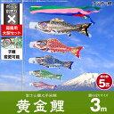 フジサン鯉のぼり 庭園用 こいのぼり「富士山麓之手染鯉 黄金鯉 3m 5色 大型セット」 ポリエステル生地の鯉のぼり ogon-30-8