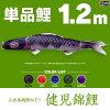 鯉のぼりこいのぼり「錦鯉(ワタナベ鯉)健児錦鯉1.2m単品鯉(赤、青、紫)」●単品鯉のぼり