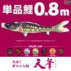 鯉のぼりこいのぼり「錦鯉(ワタナベ鯉)天華錦鯉0.8m単品鯉(青、緑、橙)」●単品鯉のぼり