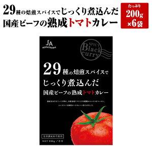 国産ビーフの熟成トマトカレー 6個入り レトルトカレー 熟成 トマトカレー 箱入り 6次加工品
