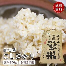 「勧進帳のふるさと」石川県小松産。特別栽培米コシヒカリ1等米30kg玄米「蛍米」