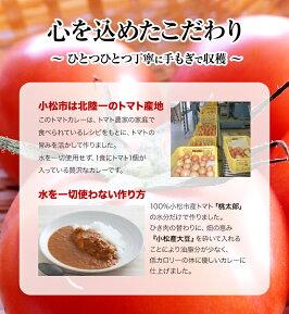 ヘルシートマトカレーの盛付け例