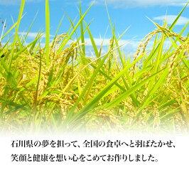 【玄米30kg】【令和1年産】【勧進帳のふるさと】石川県の早生品種の代表格ゆめみづほ石川県産米一等米JA農協米新米