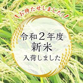「勧進帳のふるさと」石川県小松産特別栽培米コシヒカリ蛍米精米10キロ1等米