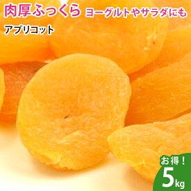 アプリコット(あんず) 5kg ドライフルーツ