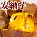 【送料無料】冷凍焼き芋安納紅(300g×5袋)安納芋