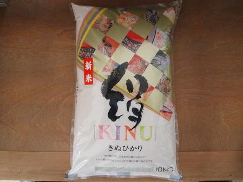 【滋賀県産キヌヒカリ】【送料無料お米・新米】【絹のようなつややかなお米】平成23年産近江米きぬひかり白米10kg
