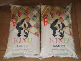 【新米】【1年産】滋賀県産キヌヒカリ20kg(白米10kg×2袋)【送料無料】(一部送料別途)