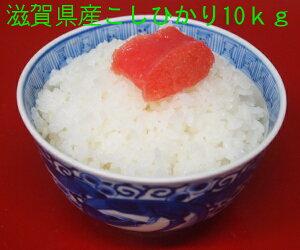 【1年産】【送料無料】(一部送料別途)滋賀県産 コシヒカリ白米10kgまたは玄米10Kg