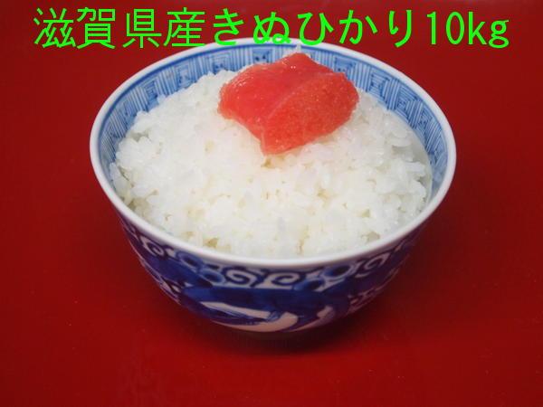 近江米【29年産・1等米】【送料無料】(一部送料別途)滋賀県産キヌヒカリ10kg
