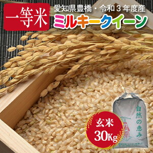 【令和2年度・愛知県豊橋産・送料無料!(一部地域を除く)】ミルキークイーン・30kg まとめ買い・減農薬玄米