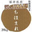 いちほまれ 新米 令和2年 20kg(5kg×4) 特別栽培米 福井産 お歳暮 ギフト おもたせ 贈答 内祝い お祝い