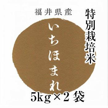 新米入荷 10kg 送料無料【特別栽培米】福井県産 いちほまれ 10kg(5kg×2袋)