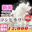 お米 こしひかり 30kg 送料無料富山県 黒部 コシヒカリ 30kg米 30kg 送料無料 白米富山米