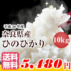 【あす楽 送料無料】<お米マイスターオススメ>ひのひかり 10kg 送料無料奈良県産 ヒノヒカリ 10kg米 10kg 送料無料 白米お米 ヒノヒカリ 10kg