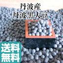 丹波黒豆 新豆【送料無料】丹波 黒豆 3L 500g丹波篠山産 丹波黒大豆