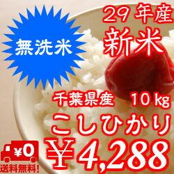 【29年産】新米入荷!無洗米 コシヒカリ 10kg(5kg×2)おいしい♪手間なし♪千葉県産※送料無料※※送料無料地域に除外があります※北海道・九州:+400円