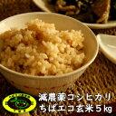【30年産】★ちばエコ★減農薬コシヒカリ 玄米 5kg送料無料♪数量限定♪※送料無料地域に除外があります※北海道・…