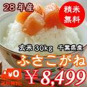 千葉県産 ふさこがね 【28年産】玄米30kg(10kg×3)無料で小分け♪精米無料♪※送料無料地域に除外があります※北…