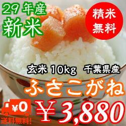 【29年産】新米入荷!千葉県産 ふさこがね 玄米10kg(5kg×2)送料無料♪精米無料♪※送料無料地域に除外があります※北海道・九州:+400円