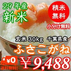 【29年産】千葉県産 ふさこがね玄米30kg(10kg×3)無料で小分け♪精米無料♪※送料無料地域に除外があります※北海道・九州:+600円