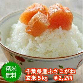 【30年産】千葉県産 ふさこがね玄米5kg 送料無料♪精米無料♪※送料無料地域に除外があります※北海道・九州:+400円