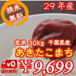 【29年産】新米!千葉県産 あきたこまち 玄米30kg精米無料♪小分けも無料♪※送料無料地域に除外があります※北海道・九州:+600円