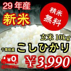 【29年産】新米入荷!千葉県産 コシヒカリ玄米10kg(5kg×2)生産者から直接仕入れ送料無料♪精米無料♪※送料無料地域に除外があります※北海道・九州:+600円