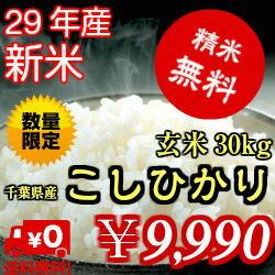 【29年産】千葉県産 コシヒカリ玄米30kg(10kg×3)送料無料♪精米無料♪小分けも無料♪※送料無料地域に除外があります※北海道・九州:+600円