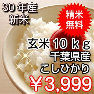 新的股票 ! 越光千叶地区水稻 10 公斤 (5 公斤 x 2) 直接从生产商 ♪ 水稻免费购买 ! * 区域有排斥 * 北海道、 九州︰ ﹢ 日元
