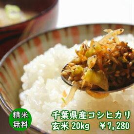 【30年産】千葉県産 コシヒカリ玄米20kg(10kg×2袋)送料無料♪精米無料♪小分けも無料♪※送料無料地域に除外があります※北海道・九州:+600円