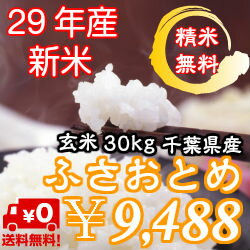 【29年産】新米入荷!千葉県産 ふさおとめ 玄米30kg送料無料♪精米無料♪小分けも無料♪※送料無料地域に除外があります※北海道・九州:+600円