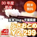 【30年産】千葉県産 ふさおとめ玄米5kg 送料無料♪精米無料♪※送料無料地域に除外があります※北海道・九州:+400円