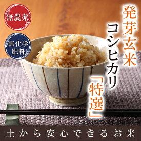 発芽玄米の無農薬送料無料無農薬・無化学肥料栽培無農薬コシヒカリ「特選」アブシジン酸は検出されませんでした!限定米 3kg真空パック30年産米・食味鑑定士認定米