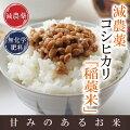 【新米予約】26年産減農薬コシヒカリ「稲藁米」5kg「早期新米予約特典付」