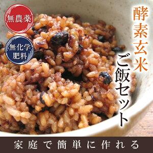 『キャッシュレス5%還元』酵素玄米(寝かせ玄米)5kgセット送料無料★令和の新米 令和元年福井県産無農薬玄米