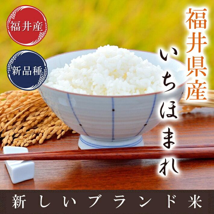 いちほまれ福井県30年産福井の新しいお米白米 5kg米・食味鑑定士認定米